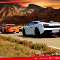 Exotic Car Racing: Playground for Adults